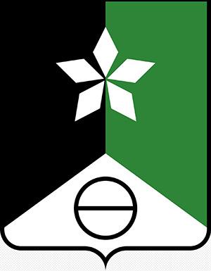 герб Соледара